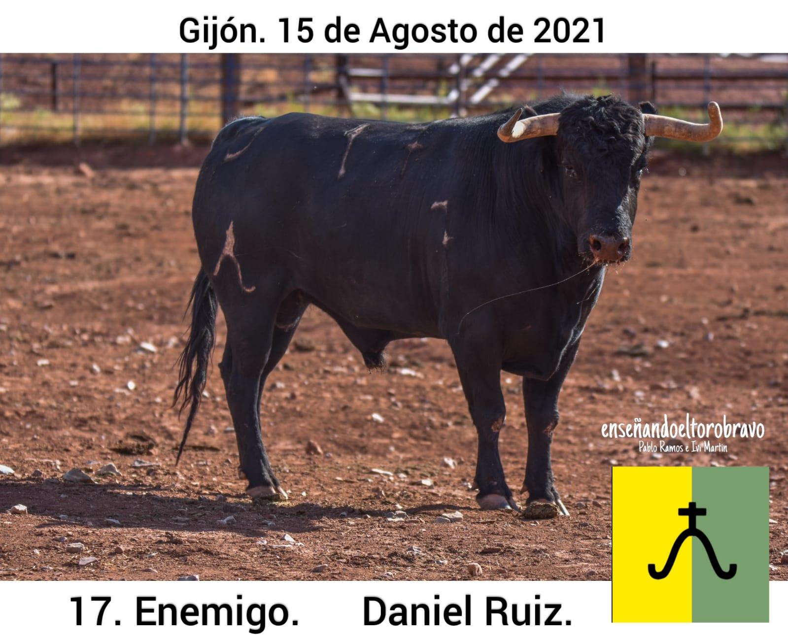 Toro-Daniel-Ruiz-Gijon-6